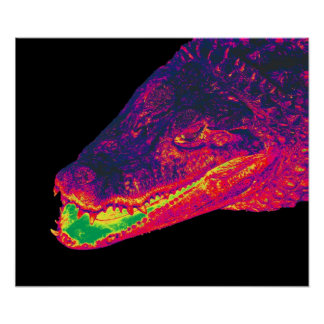Crocodile / Alligator Head, Artistic Poster