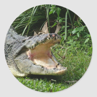 Crocodile Classic Round Sticker