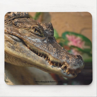 Crocodile Mouse Pad