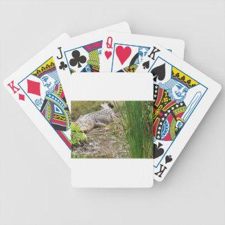 CROCODILE QUEENSLAND AUSTRALIA BICYCLE PLAYING CARDS