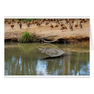 CROCODILE QUEENSLAND AUSTRALIA CARD