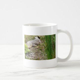 CROCODILE QUEENSLAND AUSTRALIA COFFEE MUG