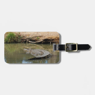 CROCODILE QUEENSLAND AUSTRALIA LUGGAGE TAG