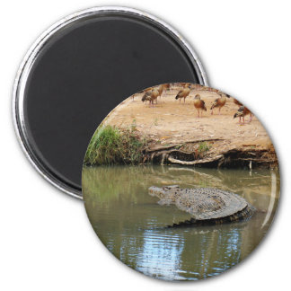 CROCODILE QUEENSLAND AUSTRALIA MAGNET