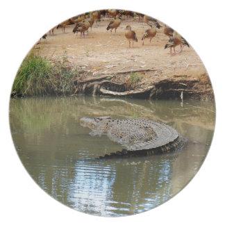 CROCODILE QUEENSLAND AUSTRALIA PLATE