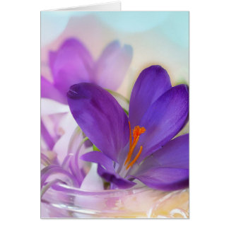 Crocus and Lily of the Valley Floral Arrangement . Card