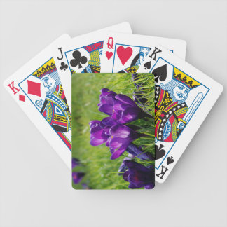 Crocus blooms bicycle playing cards
