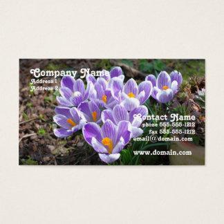 Crocus Business Card