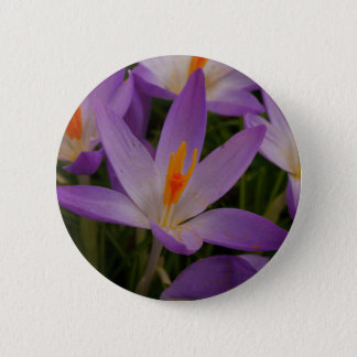 Crocus Button
