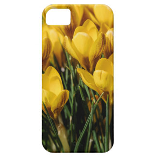 crocus case for the iPhone 5