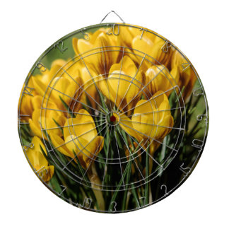 crocus dartboards