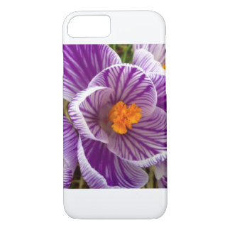 Crocus Design Case