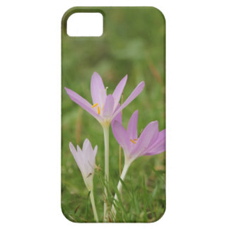 Crocus flower case for the iPhone 5