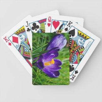 Crocus flower poker deck