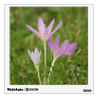 Crocus flower wall decal