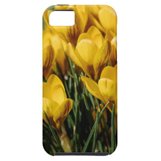 crocus iPhone 5 case