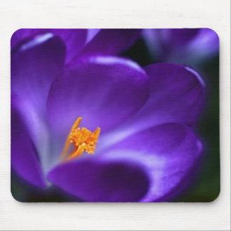 crocus mouse pad