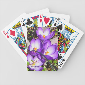 Crocus Playing Cards