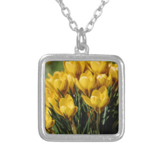 crocus silver plated necklace