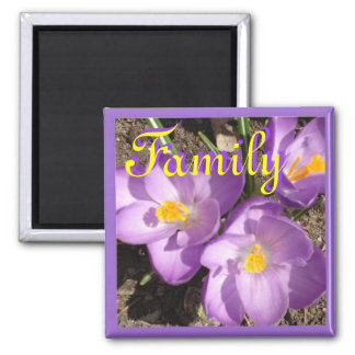 crocusfamilymagnet magnet