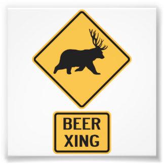Croisement de bière de cerfs communs d'ours photographe
