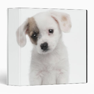 Cross breed puppy (2 months old) vinyl binder