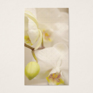 CROSS-HATCH DESIGN with ORCHIDS II Business Card