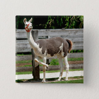 Cross-Legged Llama Button Badge