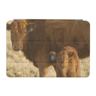 Crossbred cow with calf near Choteau, Montana, iPad Mini Cover