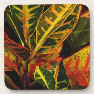 Croton Leaves Abstract Coaster