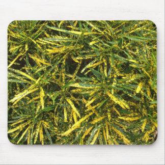 Croton leaves mousepad
