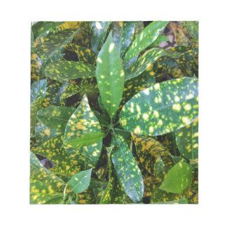 Croton Plant Notepad