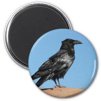 crow 2 inch round magnet