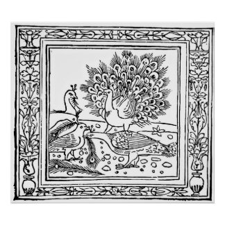 Crow and Peacock Aesop s Fables Engraving Print