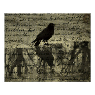 Crow And Poe Papers Poster
