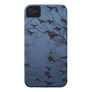 Crow flock iPhone 4 cover