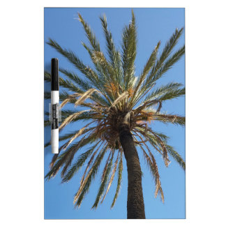 crown of a palm tree dry erase board
