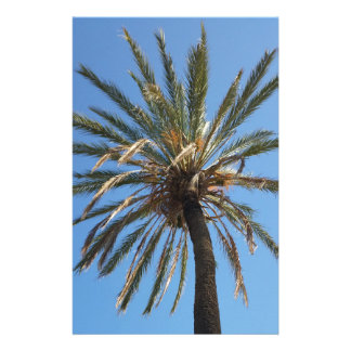 crown of a palm tree stationery
