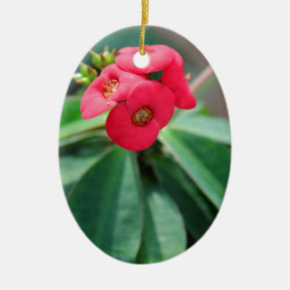Crown of Thorns Ceramic Oval Ornament