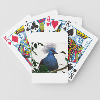 Crowned Pigeon Bicycle Playing Cards