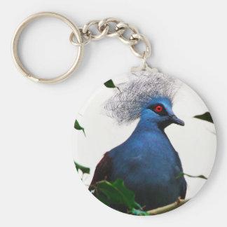 Crowned Pigeon Keychain