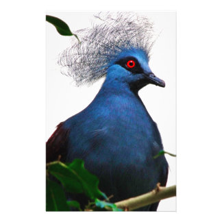 Crowned Pigeon Stationery