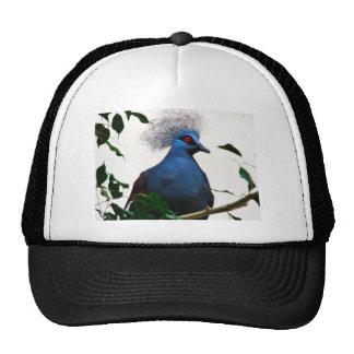 Crowned Pigeon Trucker Hat