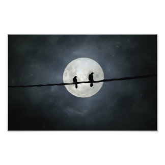 Crows Lit By The Slivery Moon Photo Print