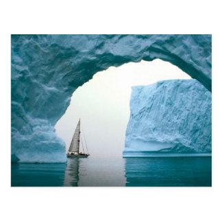 Cruising Antarctica Postcard