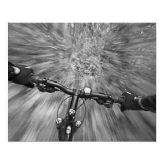 Cruising down a buff section of singletrack poster