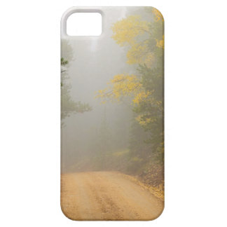 Cruising Into Autumn Fog Case For The iPhone 5