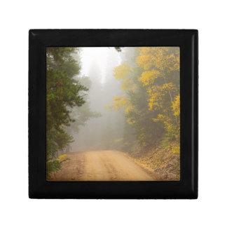 Cruising Into Autumn Fog Gift Box
