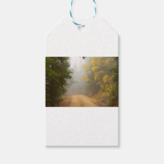 Cruising Into Autumn Fog Gift Tags