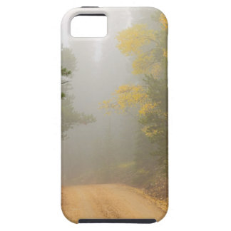 Cruising Into Autumn Fog iPhone 5 Cover